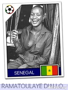 senegal - FIFA World Cup Country Cards