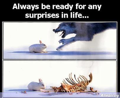 http://www.anvari.org/db/cols/Secrets_of_a_Happy_Life/image006.jpg