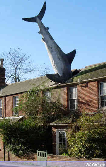 uk shark - Strange Statues around the World