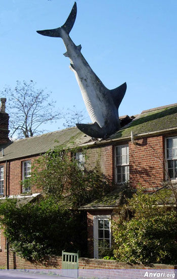 uk shark - Strange Statues around the World 2