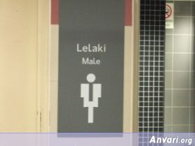 17 bklccmalelj7 - Toilet Signs Around the World