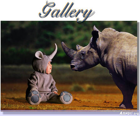 Baby Rhino - Cute Kids