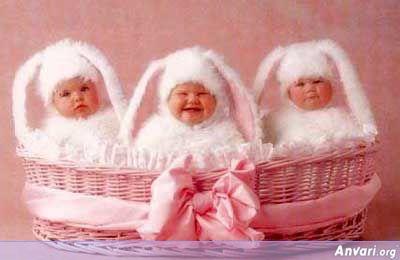 Cute Easter Babies
