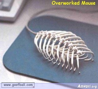 Overworked Mouse - Overworked Mouse