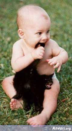 baby cat - Cute Kids