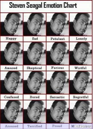 Steven Segal Emotion Chart - Misc