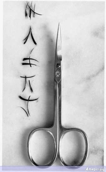 UN Scissors - Photography