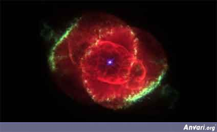 red rose nebula rahman - Religion